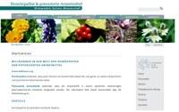 Neue Website über Wissenschaft und Forschung von Dr. Friedrich Dellmour online